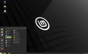 Linux Mint 20 after installation