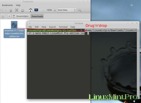 Make a bootable flash drive from an ISO image on Linux Mint